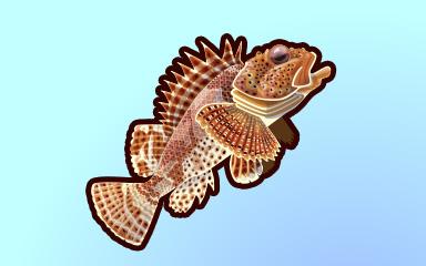 Sharp Swimmer Badge - Quinn's Aquarium