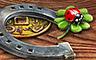 Lucky Ducks Badge - CLUE Secrets & Spies
