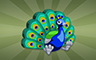 Stuffed Peacock Badge - Poppit! Bingo