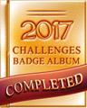 Pogo 2017 Album Badge