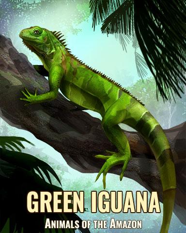 Green Iguana Badge - Jungle Gin HD