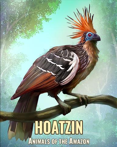 Hoatzin Badge - Solitaire Blitz