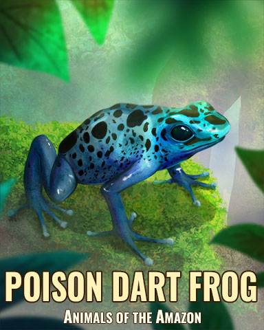 Poison Dart Frog Badge - Rainy Day Spider Solitaire HD