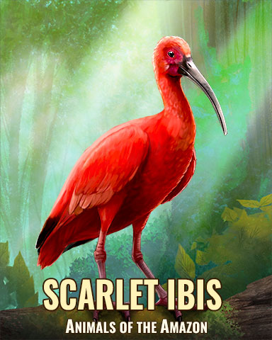 Scarlet Ibis Badge - Jet Set Solitaire