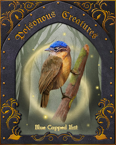 Blue-Capped Ifrit Poisonous Creatures Badge - Spades HD