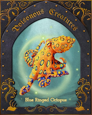 Blue-Ringed Octopus Poisonous Creatures Badge - Claire Hart: Secret In The Shadows