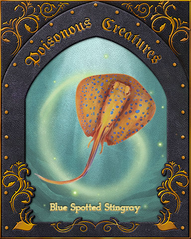 Blue-Spotted Stingray Poisonous Creatures Badge - Canasta HD