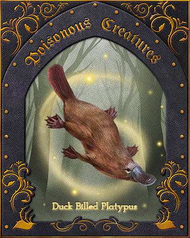 Duck-Billed Platypus Poisonous Creatures Badge - Rainy Day Spider Solitaire HD
