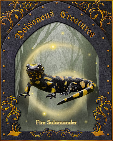 Fire Salamander Poisonous Creatures Badge - First Class Solitaire HD