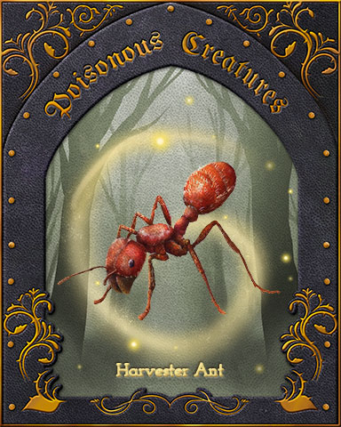 Harvester Ant Poisonous Creatures Badge - First Class Solitaire HD