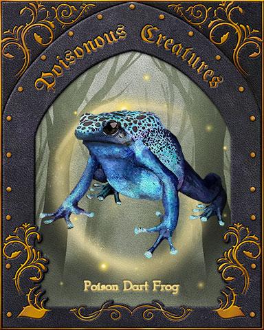 Poison Dart Frog Poisonous Creatures Badge - World Class Solitaire HD
