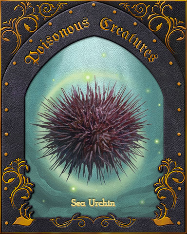 Sea Urchin Poisonous Creatures Badge - Mahjong Safari HD