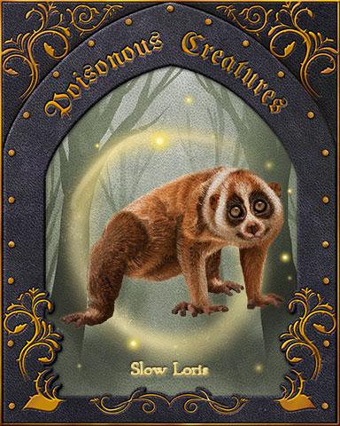 Slow Loris Poisonous Creatures Badge - StoryQuest