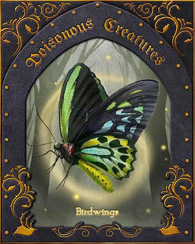Birdwings Poisonous Creatures Badge - Aces Up! HD