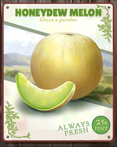 Honeydew Melon Produce Badge - StoryQuest