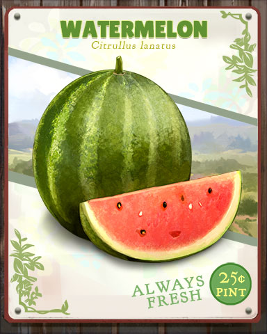 Watermelon Produce Badge - Jigsaw Treasure Hunter HD