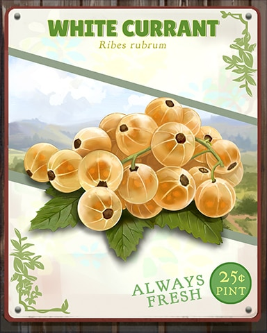 White Currant Produce Badge - Snowbird Solitaire