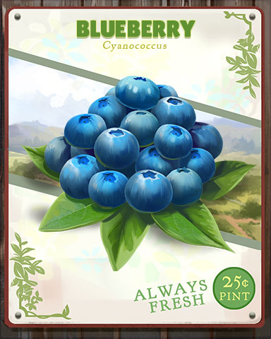 Blueberry Produce Badge - World Class Solitaire HD