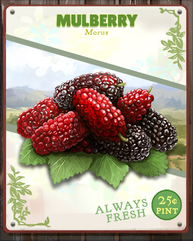 Mulberry Produce Badge - Anagrams