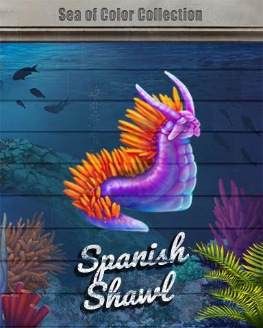 Spanish Shawl Sea Of Color Badge - Jungle Gin HD