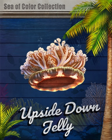 Upside Down Jellyfish Sea Of Color Badge - Sweet Tooth Town