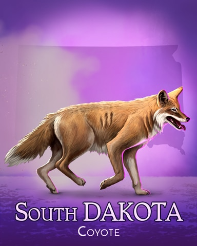 Coyote Wild America Badge - Word Search Daily HD