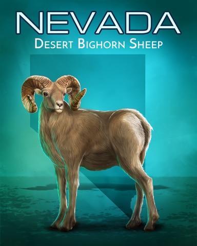 Desert Bighorn Sheep Wild America Badge - First Class Solitaire HD