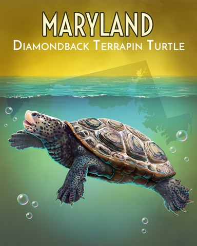 Diamondback Terrapin Turtle Wild America Badge - Tri-Peaks Solitaire HD
