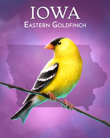 Eastern Goldfinch Wild America Badge - World Class Solitaire HD