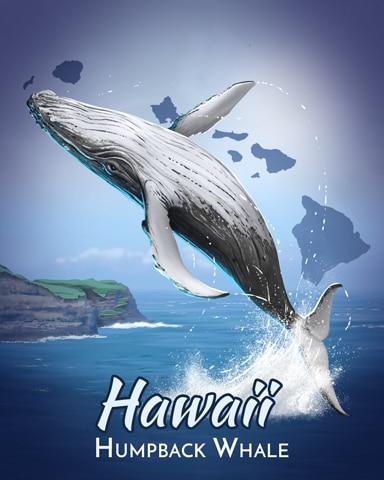 Humpback Whale Wild America Badge - Poppit! Bingo