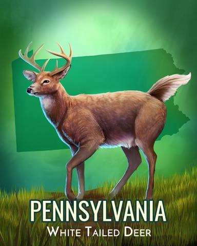 Pennsylvania White-Tailed Deer Wild America Badge - Canasta HD
