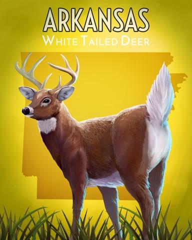 Arkansas White-Tailed Deer Wild America Badge - Mahjong Safari HD