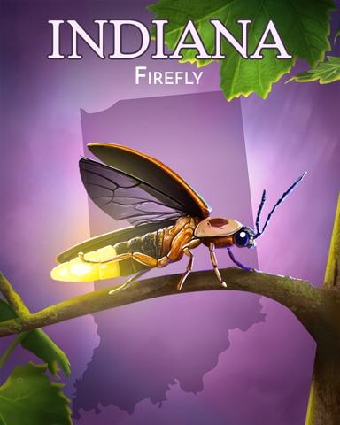 Firefly Wild America Badge - Canasta HD