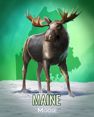 Moose Wild America Badge - Spades HD