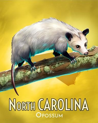 Opossum Wild America Badge - Mahjong Safari HD