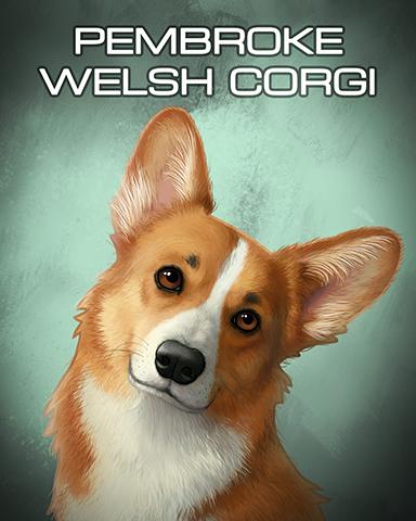 Pembroke Welsh Corgi Badge - Dominoes