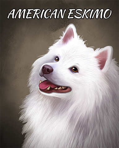 American Eskimo Dog Badge - Pogo Bowl