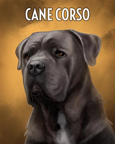 Cane Corso Badge - Everyone Wins Bingo