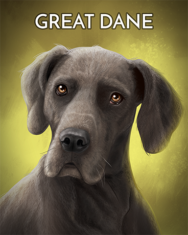 Great Dane Badge - Pogo Bowl
