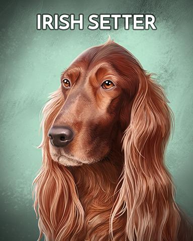 Irish Setter Badge - Poppit! Sprint
