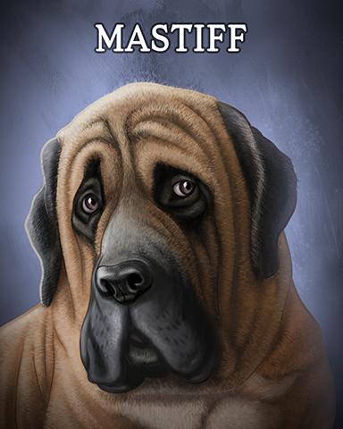 Mastiff Badge - Aces Up! HD