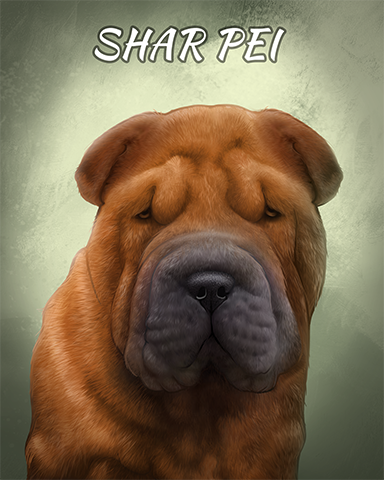 Shar Pei Badge - World Class Solitaire HD
