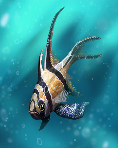 Banggai Cardinalfish Badge - Pogo Daily Sudoku
