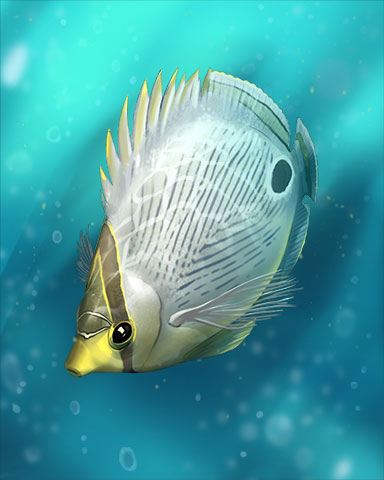 Foureye ButterflyFish Badge - Sweet Tooth Town