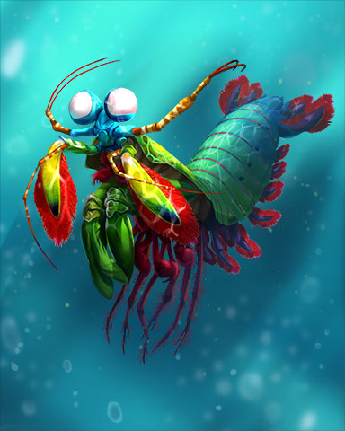 Peacock Mantis Shrimp Badge - Pogo Addiction Solitaire HD