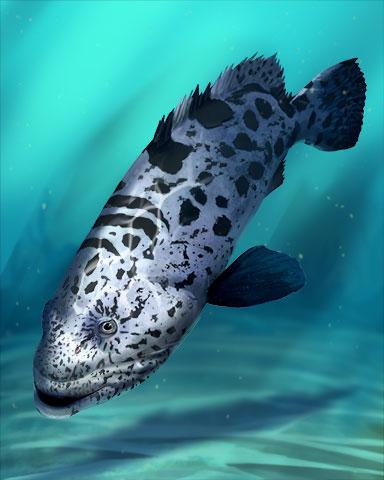 Potato Cod Fish Badge - Word Search Daily HD