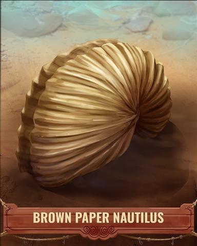 Brown Paper Nautilus Shell Badge - Mahjong Garden HD