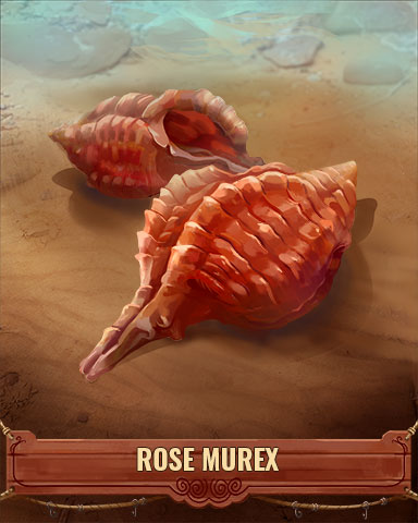 Rose Murex Shell Badge - Pogo Daily Sudoku