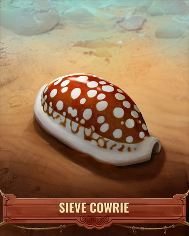 Sieve Cowrie Shell Badge - Pogo Addiction Solitaire HD