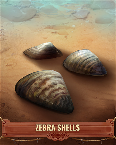 Zebra Shell Badge - Rainy Day Spider Solitaire HD
